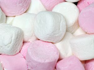 How Can Marshmallows Predict Your Level Of Weight Loss Success?